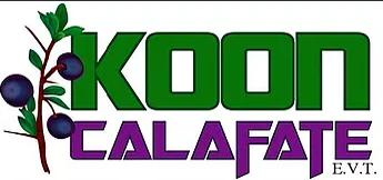 Koon Calafate Leg 17275